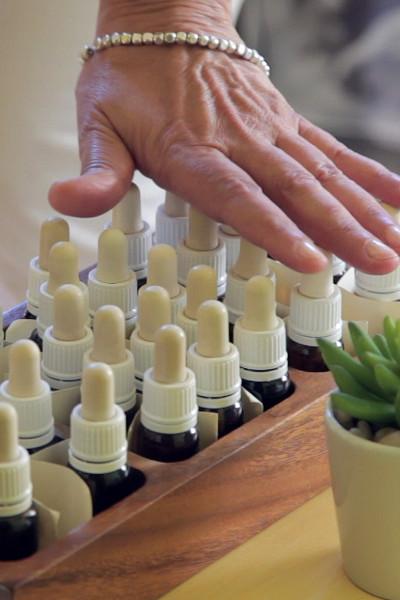 Taller: Farmaciola de flors de Bach per la familia